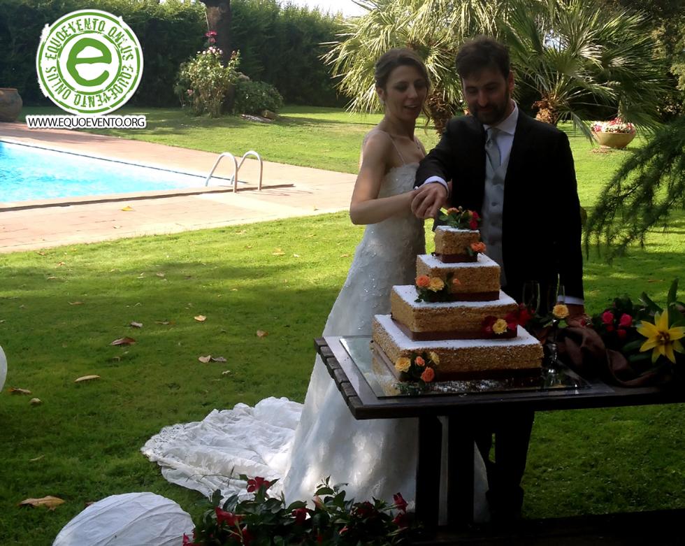 Equowedding Matrimonio Equosolidale Equoevento Onlus